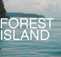 FOREST ISLAND