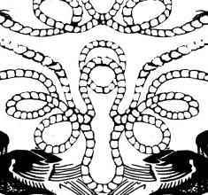 Samunderneath Apparel Graphics